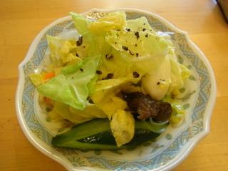 サリサリカリーサラダ2015.JPG