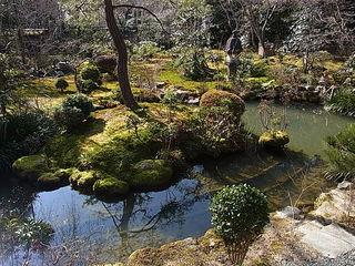 龍安寺西源院縁台から眺める庭園.JPG